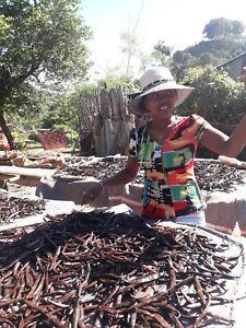 10 gousses de Vanille Bourbon 17/19 origine Madagascar 2020 direct productrice