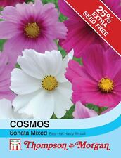 Thompson /& MORGAN-fleurs-Cosmos coquillages 100 graines
