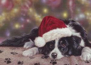 Border Collie Farm Sheep Dog Cute Puppy Painting Christmas Xmas Card
