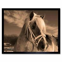 Icelandic Pony Sepia Horse Winter Snow 12X16 Inch Framed Art Print
