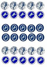 MILLWALL EDIBLE RICE WAFER PAPER CUP CAKE TOPPER X30