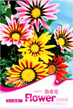 Original Package 50 Gazania Seeds Colorful Flower Garden Seeds For Gift A029
