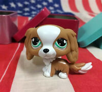 Littlest Pet Shop LPS#1825 Special Edition Tan White King Charles Spaniel Dog