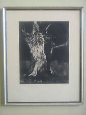"Vintage Signed / Numbered ""Elm"" Print  by Aubrey Schwartz Ready for Hanging"