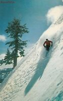 Postcard Skiing Racing Down Sheer Slope Squaw Valley Lake Tahoe CA
