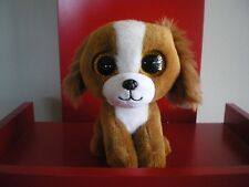 Ty Beanie Boo TALA the dog 6 inch  NWMT.  BRAND NEW IN STOCK NOW.
