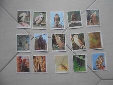Lotto 15 Figurine Il Mondo degli animali Panini 1970 da recupero