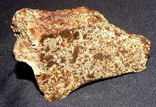 Sehr schönes Endstück Stein-Meteorit NWA,unklass., Heilstein, 82x46x20mm 138,9g
