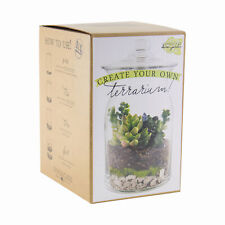 Syndicate Home Gardens 100-06-00 Diy Glass Terrarium Kit with Stones and Soil