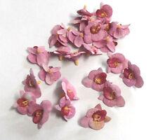 26 Orchideen Köpfe 20mm Blüten Streublumen Blüten Blütenköpfe