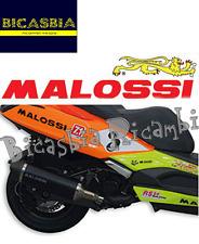 7096 - MARMITTA MALOSSI MAXI WILD LION OMOLOGATA KYMCO 350 DOWNTOWN I