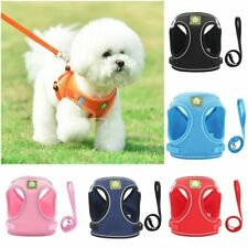 Small Pet Vest Harness Leash Set Walk Outdoor Dog Puppy Cat Soft Mesh Breathable