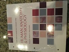 Human Anatomy and Physiology by Elaine Marieb & Katja Hoehn (looseleaf, PVCC ed)