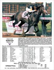 Holy Bull Florida Derby 1994 Gulfstream Park with Race Chart