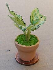 1:12 Light & Dark Green Plant + Pot Dolls House Miniature Garden Accessory G22