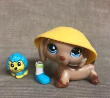 Littlest Pet Shop Dachshund #518