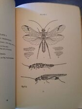 """Morphology Anatomy Ethology of Nemoura"" 1923 Plecoptera entomology insects"