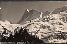 Switzerland Postcard - Grindelwald - Finsteraarhorn 4274m - MB2300