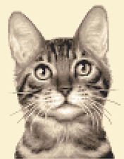 TABBY CAT, KITTEN ~ Complete counted cross stitch kit + all materials