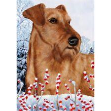 Winter House Flag - Irish Terrier 15220