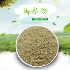 100g Natural Animal Sea Cucumber Extract Powder