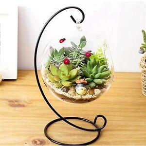 Clear Ball Flower Hanging Vase Planter Terrarium Container Glass Home Decor UK