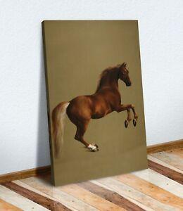 CANVAS WALL ART  PAINTING PRINT ARTWORK Horse Racing Whistlejacket George Stubbs