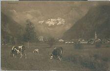 GRESSONEY CAPOLUOGO SAINT JEAN cartolina Valle d'Aosta vacche mucche al pascolo