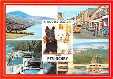 B86797 a double scotch from pitlochry dog car  scotland