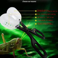 Reptile Supplies Climbing Pet Clips Feeding Reptiles Insect Breeding Worm C Cp9