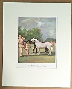 """Vintage Wesley Dennis Horse Print in 16x20 Mat, """"The Welsh Mountain Pony"""", EUC"""