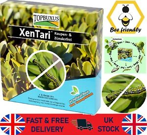 XenTari Against Boxwood Moth Caterpillar Professional Dosage Biological TOPBUXUS