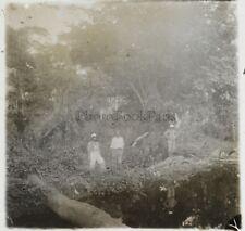 Afrique Plantation Photo ND6 Plaque de verre Stereo Vintage ca 1910