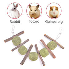 New listing Pet Teeth Grinding Toys Hamster Rabbit Tree Branch Grass Ball Hanging Cage^