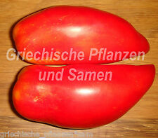 Andenhorn Tomate* 10 Samen * historische Flaschen-Tomaten Anden Tolles Geschenk
