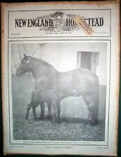Vintage April 10th 1926 issue of New England Homestead Magazine Milking Machines
