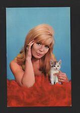 1960ys PIN UP WOMAN BATHING BEAUTY WOMEN BIKINI GIRLS PIN UP´S & cat cats Z1 CC