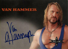 World Wrestling Championship (WCW)