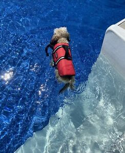 """Dog Life Jacket Flotation Device By Zippy Paws Reflective Red Small 16-20"""" NEW"""