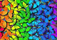 Rainbow Butterflies Poster Size A4 / A3 Butterfly Pretty Cool Poster Gift #13252