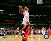 "Derrick Rose Chicago Bulls NBA Action Photo (Size: 8"" x 10"")"