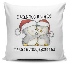I Like You A Lottle It's Like A Little Except A Lot Novelty Cushion Cover