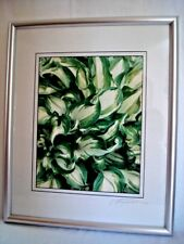 ROGER MAYNARD Framed Photo Hosta Plant Signed Andover CT Finished Sz 17x21""