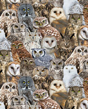 Fabric Owls Realistic Full Cotton 1/4 Yard TIMELESS TREASURES 7947