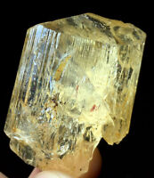 43g AMAZING GEM Natural Clear Golden Scapolite Crystal From Tanzania #163