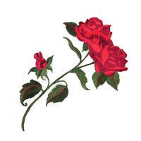 Rose Aufnäher Blumen Aufbügler Bügelbild Aufnäherbild Flicken Kleidung Patch