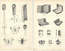 Stampa antica FARFALLE RETI E ALTRE ATTREZZATURE BUTTERFLY 1891 Antique print