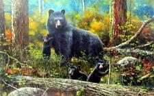 "Age of Wonder Black Bear Art Print By Jim Hansel  Image Size  12"" x 7.75"""