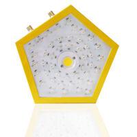 Full Spectrum 1000W LED Grow Light Hydroponic Veg Medical Flower Plant Grow Lamp