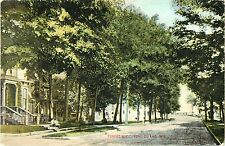 A Tree-Shaded View of Forest Avenue, Fond Du Lac WI 1909